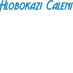 Photo of Mrs. Hlobokazi Caleni