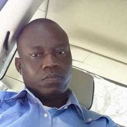 Photo of Dr. Olusola Sogbesan